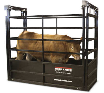 Agricultrual Livestock Scale